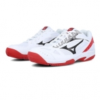 ZAPATILLA MIZUNO CYCLONE SPEED 2